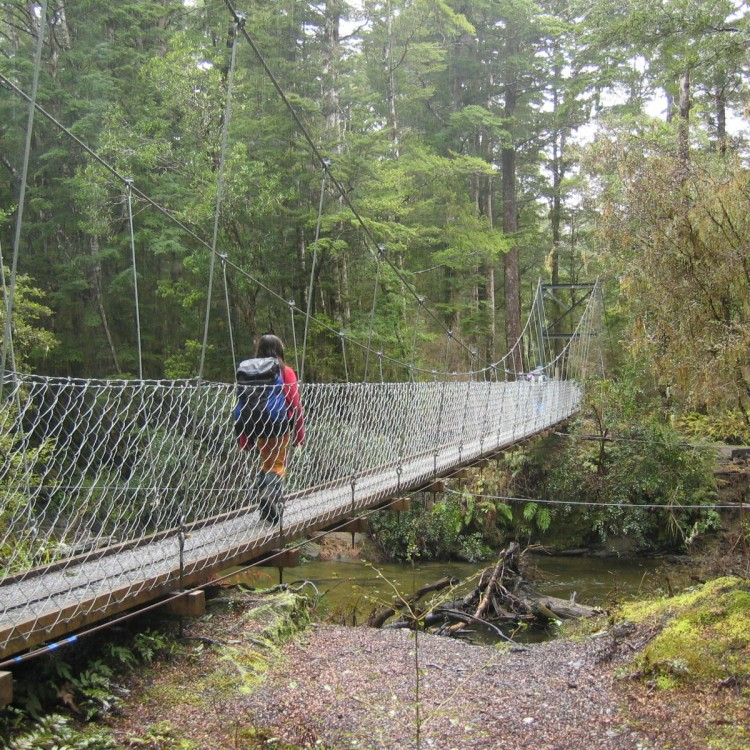 Tramper on the Kepler Track Forest Burn swing bridge