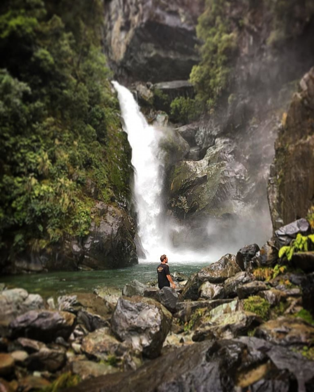 Hidden Waterfalls on the Hollyford Track, with Trips and Tramps